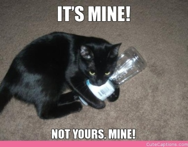 its-mine-not-yours-mine